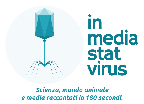 In media stat virus